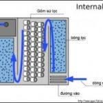 Hệ thống lọc nước cho bể cá cảnh