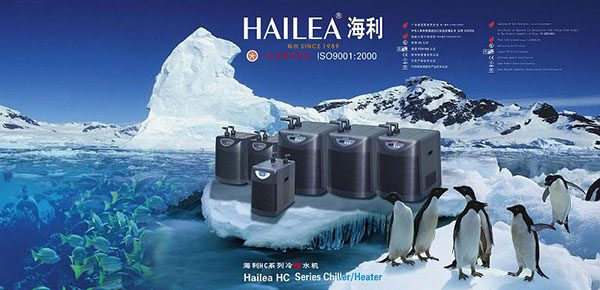 Máy làm lạnh nước Chiller